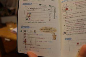 13の月の暦亀の説明