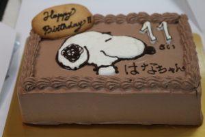 次女バースデーケーキ
