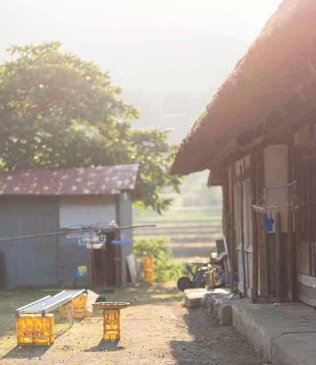 田舎の庭先