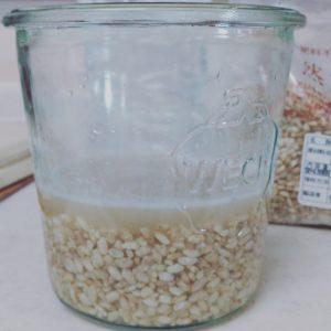 ひたひたのお水を入れた塩麹