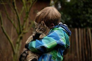 猫をぎゅっと抱く男の子