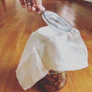 梅酵素ジュースの瓶に布で蓋をする様子2