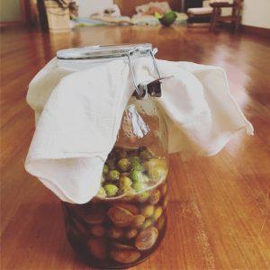 梅酵素ジュースの瓶に布で蓋をする様子3