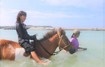 海と少女と馬