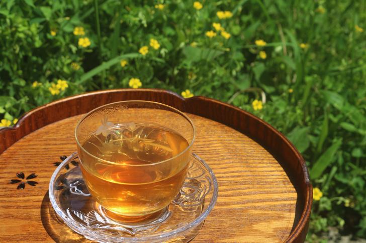 鳥取はとむぎ茶