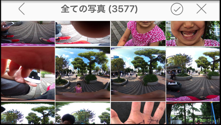 全ての写真