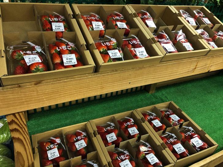 大台町のイチゴ