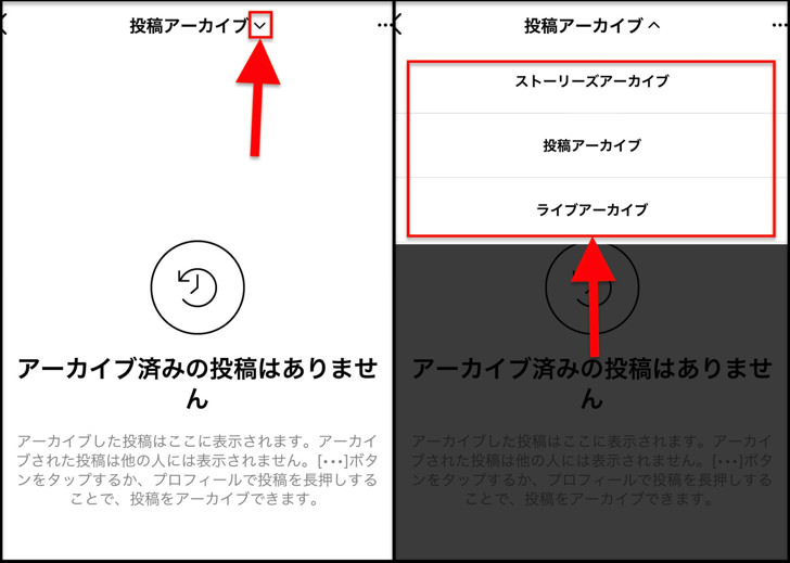 Vマーク、アーカイブの種類